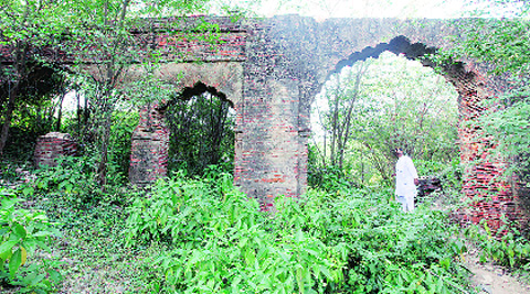 Unnao village gets its penny's worth: Tourism