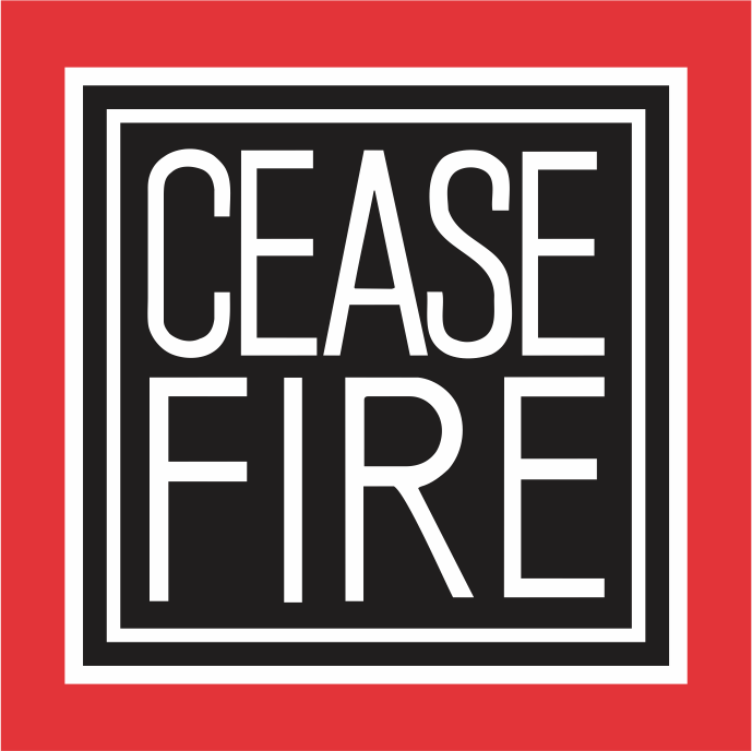 Cease fire, says India