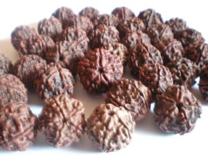 Power of Rudraksha to heal your Body and Mind
