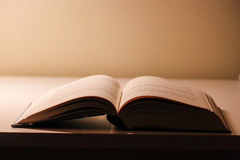 "AP CM Releases ""Nanna"" Book"