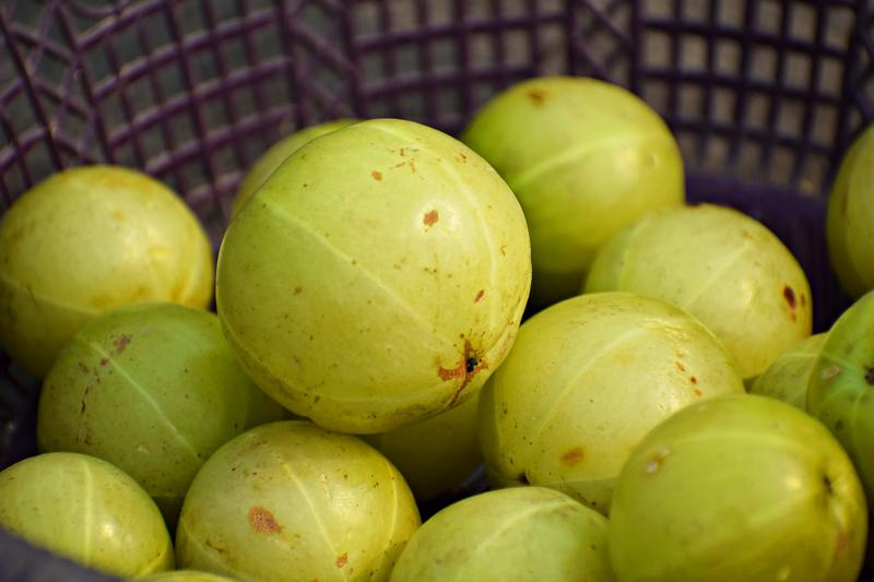 Make Your Own Herbal Amla Juice