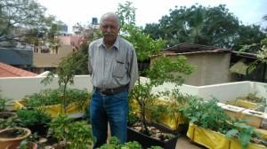 Tips to create a great terrace garden