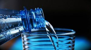 Waterman of India wins 2015 stockholm water prize