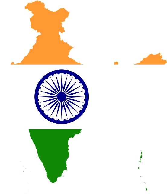 India highest in global consumer confidence