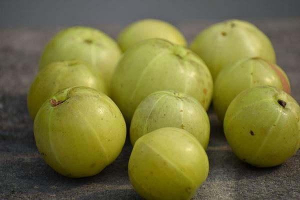 Healthy Amla recipes for Hair