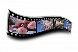 Intl children's film festival theme is 'Digital India'