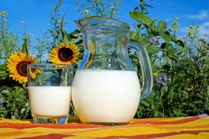 Rajasthan's 1st milk bank