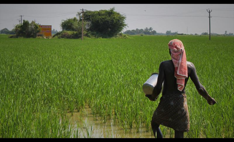 District Collector's software solution to help farmers