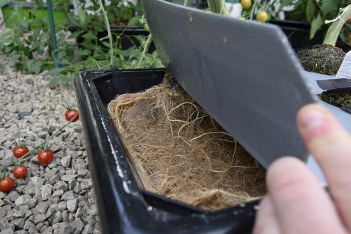 Hydroponics- the revolution in farming