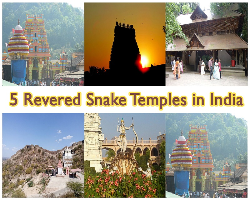 5 Revered Snake Temples in India