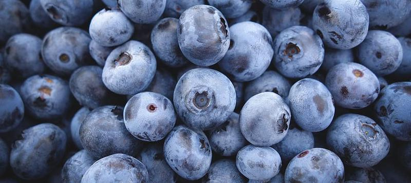 Foods that improve brain power