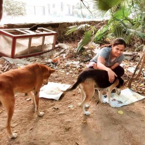 Saving dogs is her passion