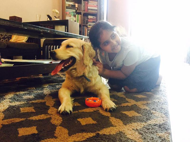 Fur ball Story – A startup with dogs