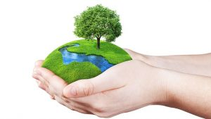 Kerala initiates 'green mission' on World Environment Day