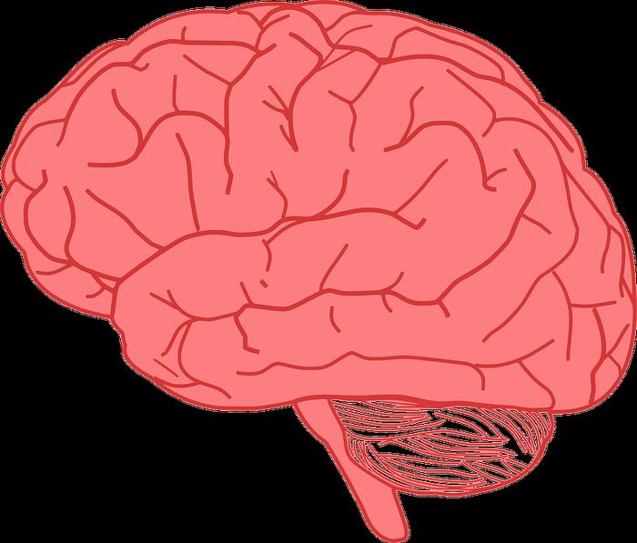 You are hurting your brain unknowingly