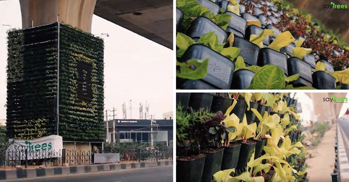 Bengaluru gets second vertical garden
