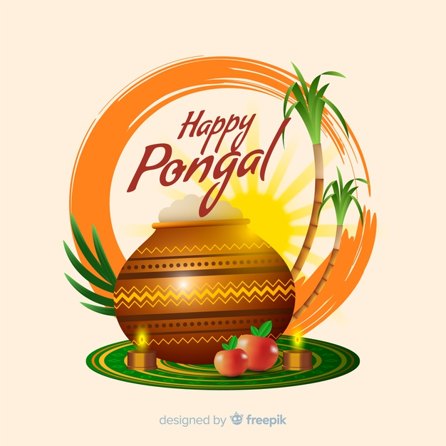 Pongal festival rituals