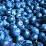 Foods that improve memory and focus