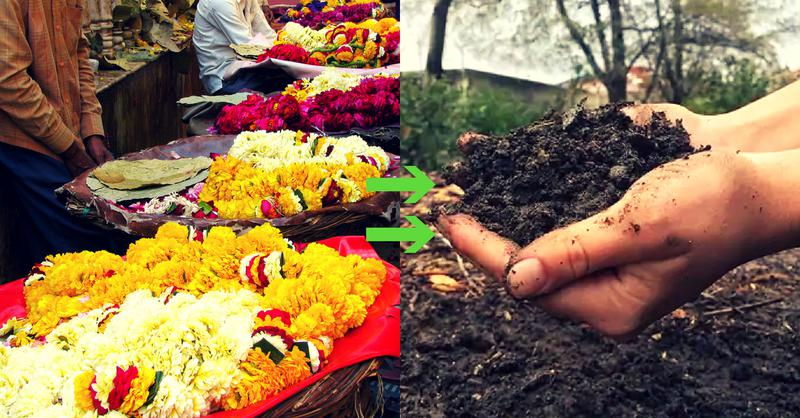 Temple Flowers turned to Organic Manure