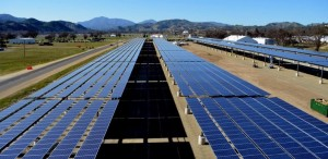 India and the International Solar Alliance