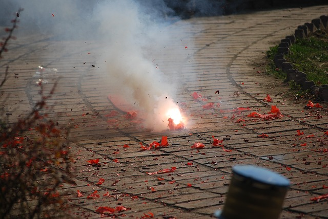 SC's verdict on firecrackers