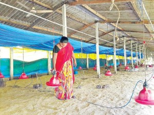 This rural woman earns ₹70,000 per month