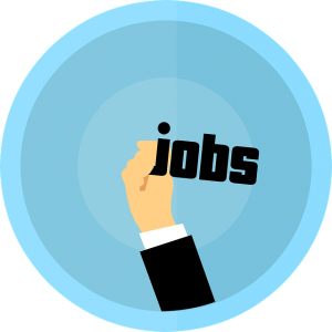 Lakhs of jobs generated in the last two years: Government
