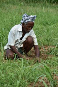 Finance Minister to interact with farmers