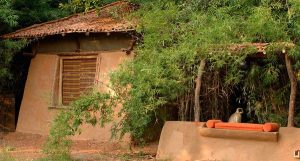 Goa Man builds eco homes to prevent pollution