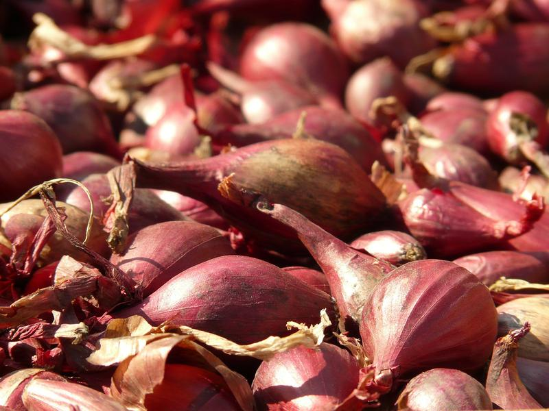 Health Benefits of Shallots