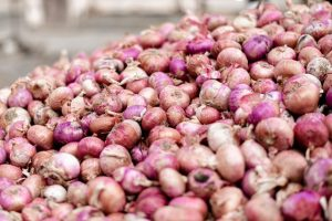 Onions stolen from farmer's storehouse