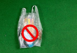 Youth fails in fight against plastic