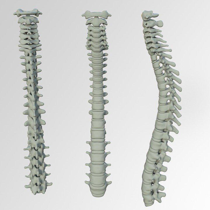Tips to keep your spine healthy