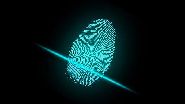 10 Unique identification features