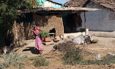 Madhya Pradesh villages witness rise in cancer deaths