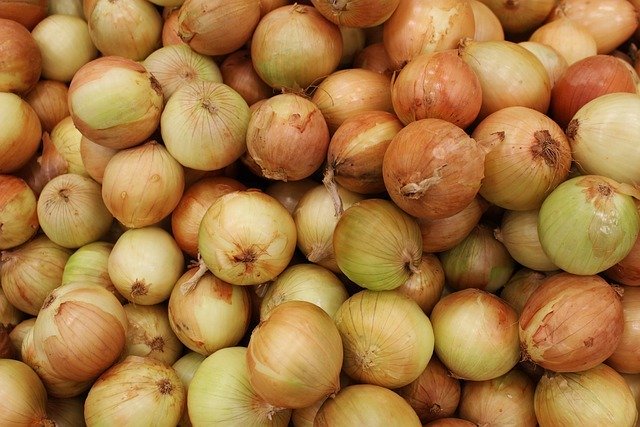 Onion prices still on rise