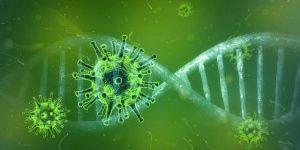 Coronavirus confirmed in Kerala