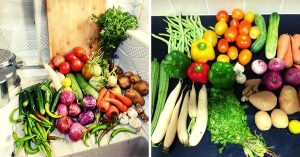 TARU's initiative helps get fresh vegetables from farms