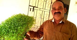 Chennai entrepreneur earns lakhs growing microgreens
