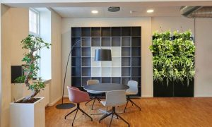OxyGarden helps purify indoor air