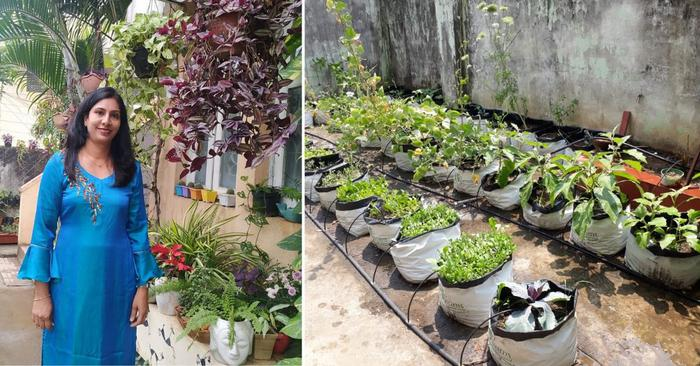 Woman shares ways to grow your own fruit trees