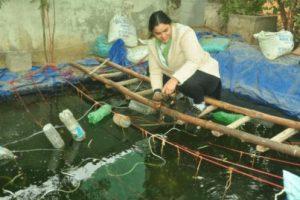 Agra woman earns lakhs with pearl growing
