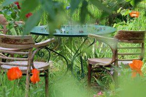 Thane Society grows organic vegetable on terrace garden