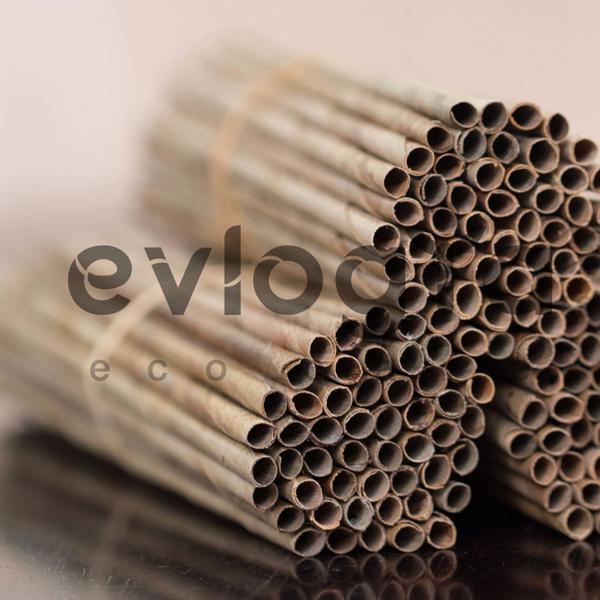 Evlogia's coconut leaf straws