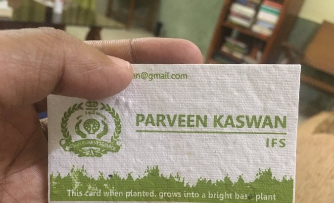 Plantable visiting cards - A new trend