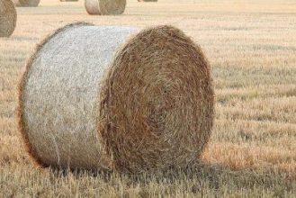 Farmer earns 95 lakhs from stubble management
