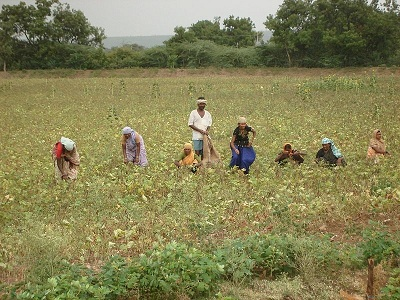 PM Kisan funds are likely to be increased