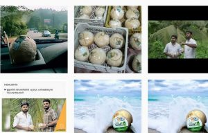 Kerala youths help coconut farmers boost income