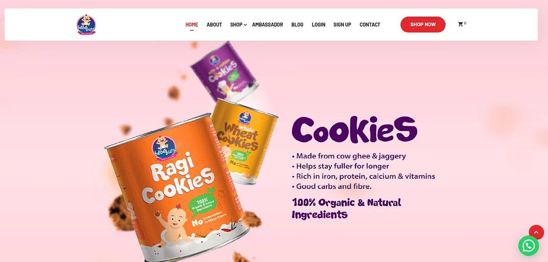 BebeBurp provides organic mixes and snacks for kids