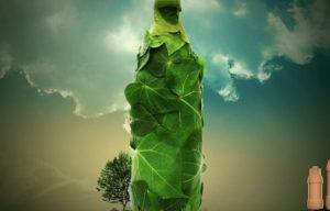 Biodegradable paper bottles